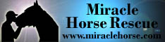 Miracle Horse Rescue