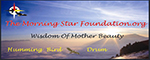 Morningstar Foundation