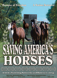 Official Saving America's Horses Banner